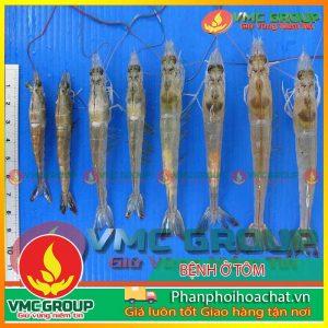 benh-do-vi-bao-tu-trung-microsporidian-pphcvm